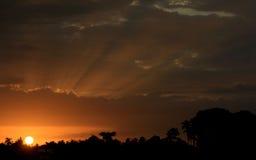 Fundos: luz do sol fotografia de stock royalty free