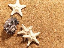 Fundos marinhos abstratos Imagens de Stock
