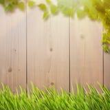 Fundos naturais abstratos com folha do verão Fotografia de Stock