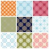 Fundos sem emenda com testes padrões florais Grupo colorido Imagens de Stock Royalty Free