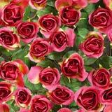 Fundos sem emenda da rosa artificial do vermelho Foto de Stock