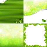 Fundos verdes Foto de Stock