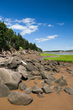 Fundy Shoreline. The shoreline of the Bay of Fundy, New Brunswick, Canada Stock Image