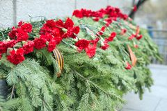 Funeral coniferous garland with carnation flowers and St. George ribbon. Solemn funeral coniferous garland with carnation flowers and St. George ribbon on the royalty free stock photo