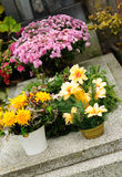 Funeral flowers. Placed on the grave at All souls holiday stock image