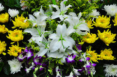 Funeral flowers for condolences Royalty Free Stock Photography