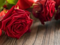 Funeral and mourning concept - red rose flower on wooden coffin stock image