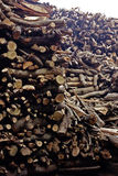 Funeral Pyre Wood Stock. A view of the towering stores of funeral pyre wood in Varanasi India. This is where nearly every Indian hopes to come to dye to be stock photo