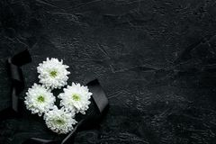 Funeral symbols. White flower near black ribbon on black background top view copy space. Funeral symbols. White flower near black ribbon on black background top royalty free stock images