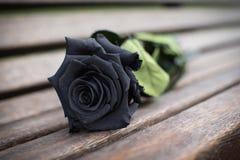 funerale Immagini Stock