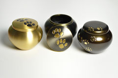 Funerary pet urn. Funeral urn for pets, after the cremation. Memorial pets Royalty Free Stock Image