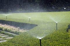 Fungerande Sprinklers i grässlätt royaltyfria foton