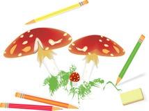 Funghi illustrazione di stock