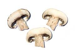 Funghi affettati Fotografie Stock Libere da Diritti
