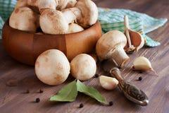 Funghi, aglio, foglia di alloro e pepper.pared crudi per cucinare Fotografie Stock Libere da Diritti