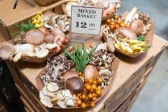 Funghi assortiti ad un mercato degli agricoltori a San Francisco, CA fotografia stock libera da diritti