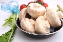 Funghi bianchi Immagine Stock