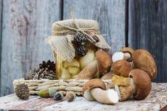 Funghi bianchi inscatolati e funghi bianchi crudi Fotografie Stock Libere da Diritti