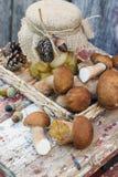 Funghi bianchi inscatolati e funghi bianchi crudi Immagine Stock Libera da Diritti