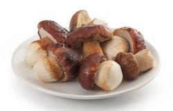 Funghi bianchi isolati sul piatto Immagini Stock Libere da Diritti