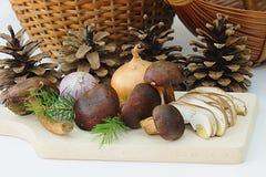 Funghi, cipolla, aglio e conifera Immagini Stock Libere da Diritti