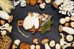 Funghi commestibili con il tagliere Fotografie Stock Libere da Diritti