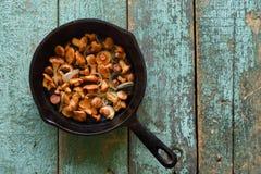 Funghi commestibili selvaggi Funghi del galletto fritti in ghisa Fotografie Stock Libere da Diritti