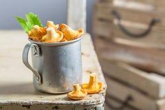 Funghi commestibili in una vecchia tazza di alluminio Fotografia Stock Libera da Diritti