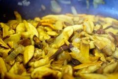 Funghi con la cipolla che frigge sulla vaschetta Immagini Stock