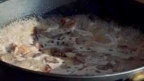 Funghi d'ebollizione in una pentola video d archivio