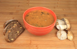 Funghi del goulash Fotografia Stock