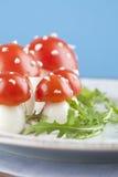 Funghi dell'agarico di mosca dell'uovo e del pomodoro Immagini Stock