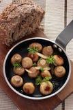 Funghi dell'aglio Fotografia Stock