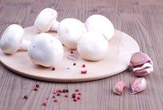 Funghi di campo con aglio e peperone Fotografia Stock