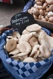 Funghi di ostrica ad un mercato Fotografie Stock