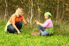 Funghi di raccolto della figlia e della madre fotografia stock libera da diritti