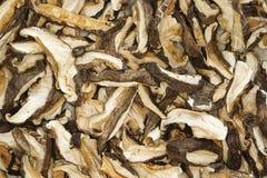 Funghi di Shiitake Fotografie Stock Libere da Diritti