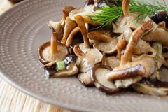 Funghi di shiitake arrostiti su un piatto Immagini Stock Libere da Diritti
