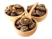 Funghi di Shiitake asciutti Immagini Stock Libere da Diritti