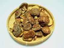 Funghi di shiitake asciutti, Immagini Stock Libere da Diritti