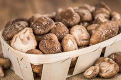 Funghi di shiitake, fuoco selettivo Immagine Stock Libera da Diritti