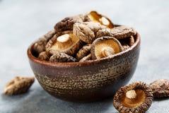 Funghi di shiitake secchi Immagini Stock