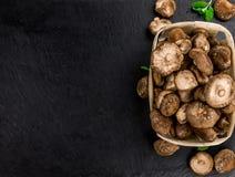 Funghi di shiitake su una lastra d'annata dell'ardesia, fuoco selettivo Immagini Stock Libere da Diritti