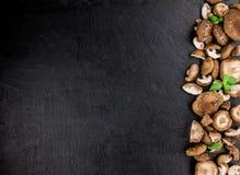 Funghi di shiitake su una lastra d'annata dell'ardesia, fuoco selettivo Immagine Stock