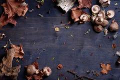 Funghi di shiitake sulla tavola di legno, fondo del raccolto di autunno Vista superiore, spazio della copia Fotografia Stock