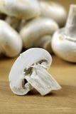 Funghi di tasto Fotografia Stock Libera da Diritti