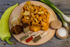 Funghi e boletus del galletto edulis con gli ingredienti per il co Fotografia Stock