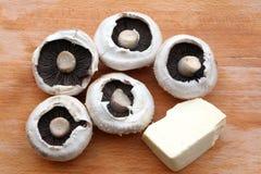 Funghi e formaggio Immagine Stock