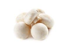Funghi e funghi crudi su fondo bianco Immagine Stock Libera da Diritti