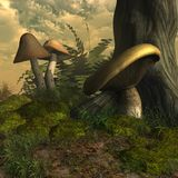 Funghi e muschio Immagine Stock Libera da Diritti